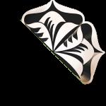 verite-beauty-halved-logo-graphic